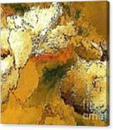 Abstraction 0434 Marucii Canvas Print