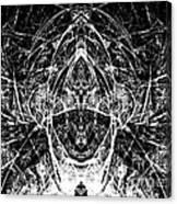 Abstraction 0542 Marucii Canvas Print