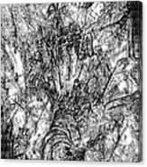 Abstraction B-w 0554 - Marucii Canvas Print