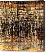 Abstract Reed And Water Patterns Canvas Print