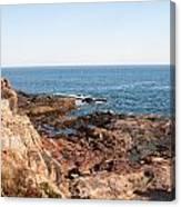Acadia Coast Canvas Print