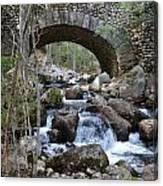 Acadia National Park Bridge Canvas Print