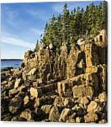 Acadia Seascape Canvas Print