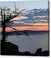 Acadia Sunrise 2 Canvas Print