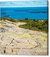 Acadia Views Canvas Print