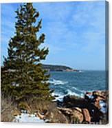 Acadian Shores In Winter Canvas Print