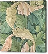 Acanthus Wallpaper Design Canvas Print