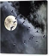 Across A Harvest Moon Canvas Print