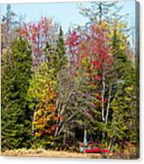 Adirondack Color II Canvas Print