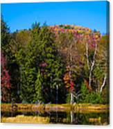 Adirondack Color IIi Canvas Print