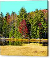 Adirondack Color Iv Canvas Print