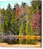 Adirondack Color Near Old Forge New York Canvas Print