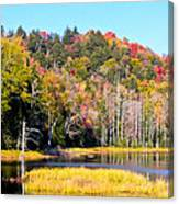 Adirondack Color V Canvas Print