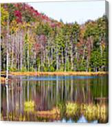 Adirondack Color Viii Canvas Print