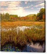 Adirondack Pond Canvas Print