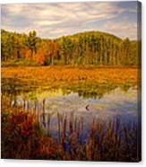 Adirondack Pond II Canvas Print