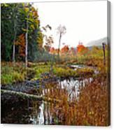 Adirondack Pond Iv Canvas Print