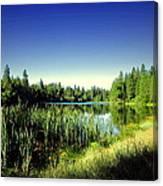 Admiring The Beauty At Woodbridge Lake Canvas Print