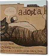 Adopt A Kat Or Me Now Canvas Print