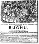 Advertisement: Buchu, 1871 Canvas Print