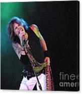 Aerosmith - Steven Tyler -dsc00139-1 Canvas Print