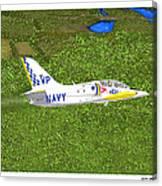 Aerovodochody L39. Canvas Print