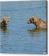Affectionate Stare Canvas Print