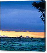 African Panoramic Sunset Landscape Canvas Print