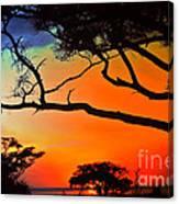 African Skies Canvas Print