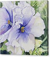 African Violet Canvas Print
