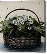 African Violets In Basket Canvas Print