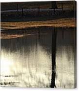 After A Long Winter Rain Canvas Print