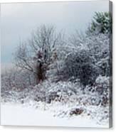 after Snow Storm Canvas Print
