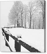 After The Winter Storm Canvas Print