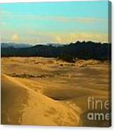 Afternoon At Oregon Dunes Canvas Print