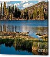 Afternoon At Sprague Lake Canvas Print