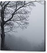 Afternoon Fog  Mono Canvas Print