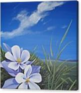 Afternoon High Canvas Print