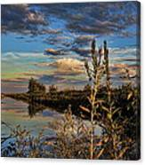Late Afternoon In The Mead Wildlife Area Canvas Print