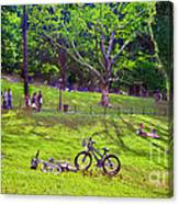 Afternoon In The Park With Friends Canvas Print