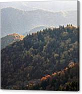 Afternoon On The Mountain Canvas Print