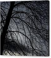 Against A Winter Sky Canvas Print