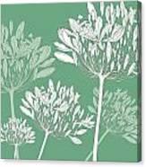 Agapanthus Breeze Canvas Print