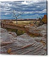 Agate Bridge In Petrified Forest National Park-arizona Canvas Print