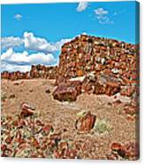 Agate House In Petrified Forest National Park-arizona  Canvas Print