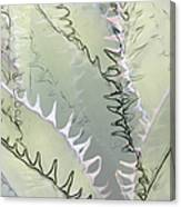 Agave Abstract Canvas Print