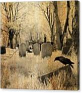 Aged Infrared Canvas Print