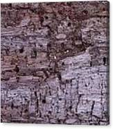 Aged Wood Canvas Print