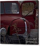 Aging Dodge   #3514 Canvas Print