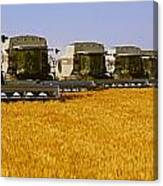 Agriculture - Six Gleaner Combines Canvas Print